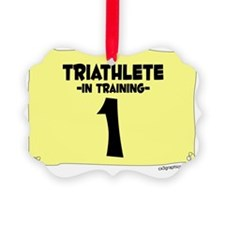 triathlete_train Ornament