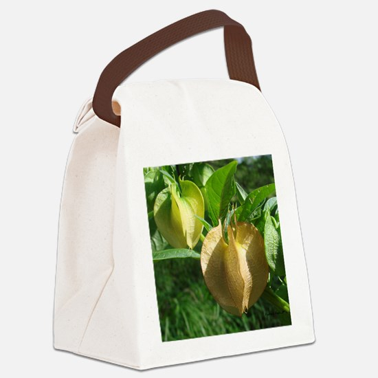 LatternFlowerMP Canvas Lunch Bag