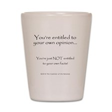 2-your.own.facts Shot Glass