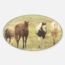 Three Horses and a Pony Decal