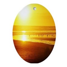 sunset and sea birds Ornament (Oval)