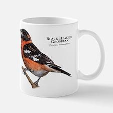 Black-Headed Grosbeak Mug