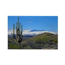 Snowy Desert With Saguaro Cactus Magnets