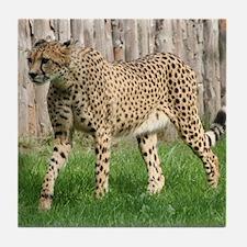 Cheetah008 Tile Coaster