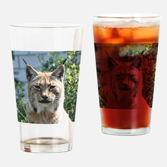 Lynx001 Drinking Glass