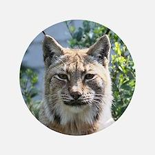 """Lynx001 3.5"""" Button"""