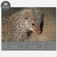 Mongoose001 Puzzle