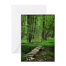 Wooden Bridge Pathway Greeting Cards