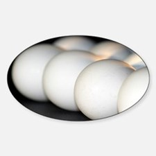 eggs Decal