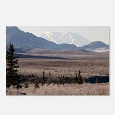 Denali-1 Postcards (Package of 8)