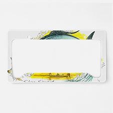 2-SF-006Silver License Plate Holder