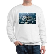 F-15 E Strike Eagle Sweatshirt