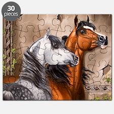 Alert_Arabians Puzzle