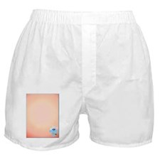 Sky Blue Bird InisdeCard Boxer Shorts