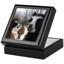 Llamas larger Keepsake Box