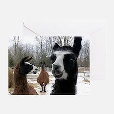 Llamas larger Greeting Card