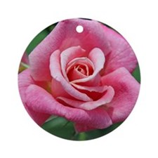 pinkrose Round Ornament