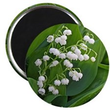 lilyofthevalley Magnet