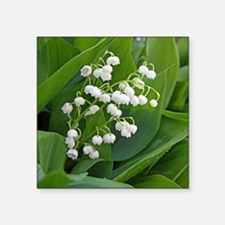 "lilyofthevalley Square Sticker 3"" x 3"""