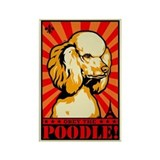 Poodle magnets Magnets