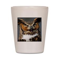 Laughing  Owl Shot Glass