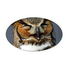 Laughing  Owl Oval Car Magnet