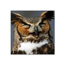 "Laughing  Owl Square Sticker 3"" x 3"""
