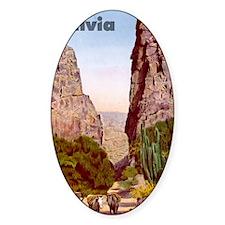 Bolivia7 Decal