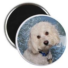 Finn Circle 2 Magnet