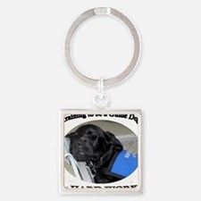 Training to be a Guide Dog Square Keychain