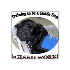 "Training to be a Guide Dog Square Sticker 3"" x 3"""