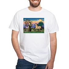 St. Francis & Buckskin horse Shirt