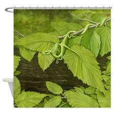 green leaf dragon Shower Curtain
