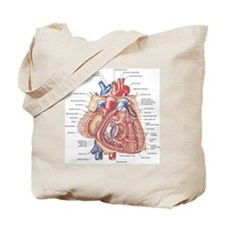 Heart anatomy Tote Bag