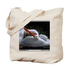 2-Z-03-Birds Snuggling Tote Bag