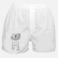 girls ax Boxer Shorts