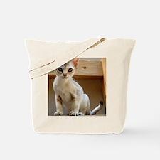 DSC_0768 Tote Bag