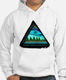 219t AS triangle Hoodie