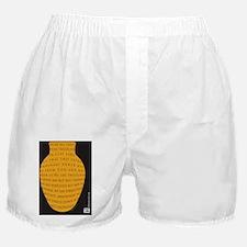 2Cor4-2 Boxer Shorts