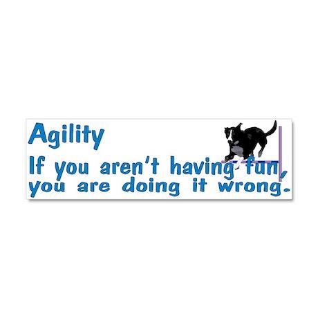 Agility Fun