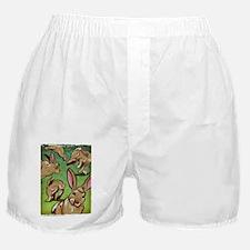 Tauntz_Bib Boxer Shorts