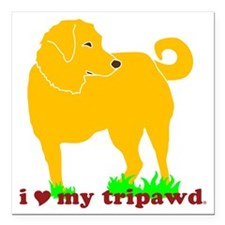 """I Love My Tripawd Golden Square Car Magnet 3"""" x 3"""""""