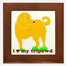 I Love My Tripawd Golden - Front Leg Framed Tile