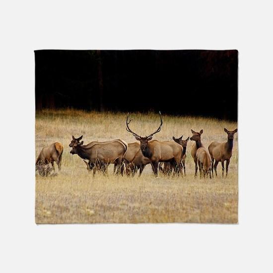 Elk 9x12 Throw Blanket