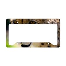 (1) Cheetah 9120 License Plate Holder