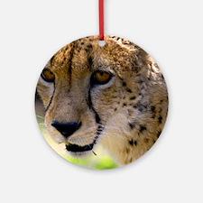 (2) Cheetah 9120 Round Ornament