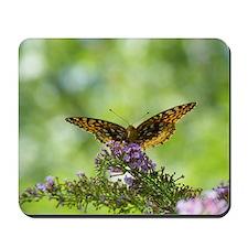 aphrodite butterfly 2 Mousepad
