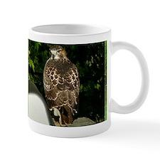 PrintHaK14x6A Mug