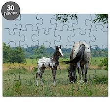 Amigo and Faith, Palisades Appaloosas Puzzle