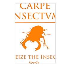 Carpe Insetum D orange 2 Postcards (Package of 8)
